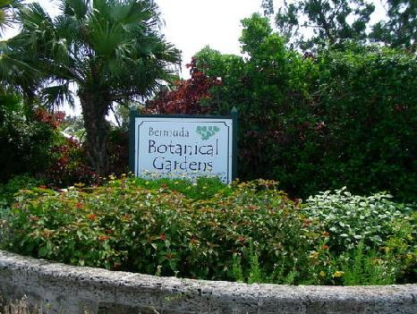 Bermuda Botanical Gardens Contact Number Address Website Phone Direction Kfn Travel Guide